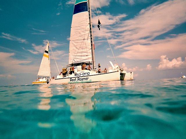 Découvrir la barrière de corail des Keys en snorkeling à Key Largo