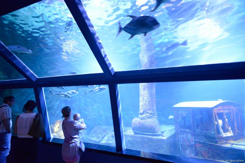 L'aquarium de Saint Gilles les bains