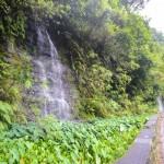150 cascades vol 2 - 5 8