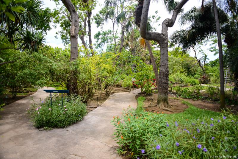 Le Jardin d'Eden de Saint Gilles les Bains