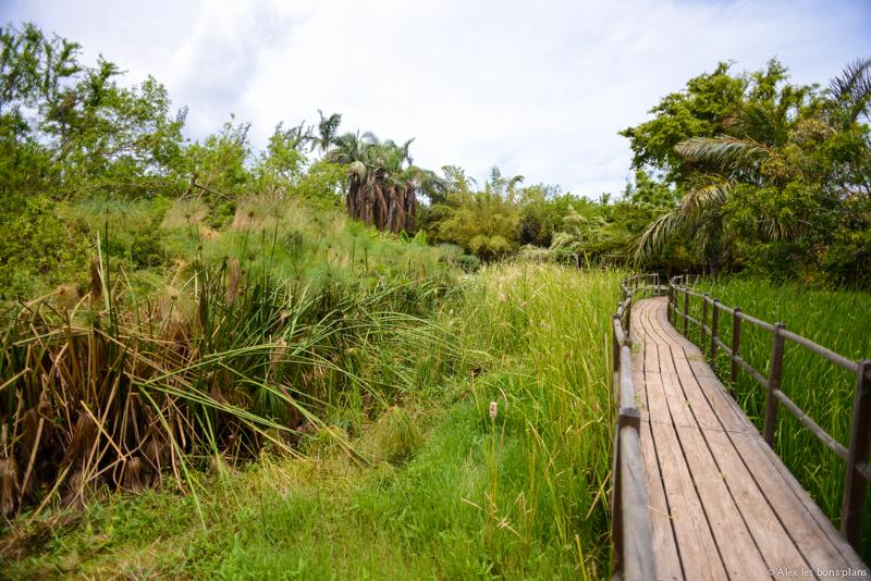 Le Jardin D Eden De Saint Gilles Les Bains Les Bons Plans Voyage D