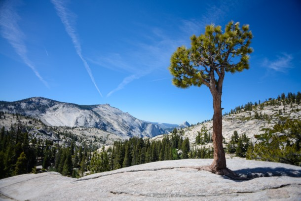 yosemite-Olmsted-Point-2