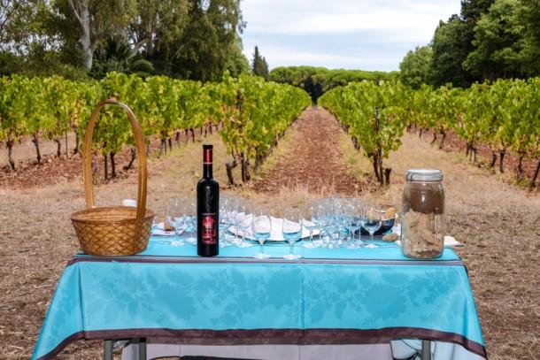 vin-saint-honorat-blogtrip-cannes-gourmet-2
