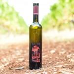 vin-saint-honorat-blogtrip-cannes-gourmet-8