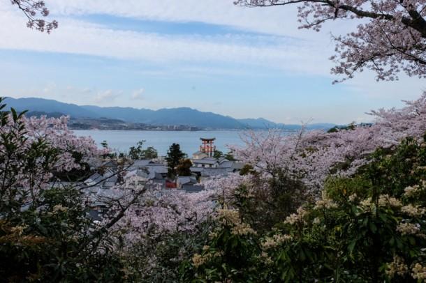 japon-miyajima-11