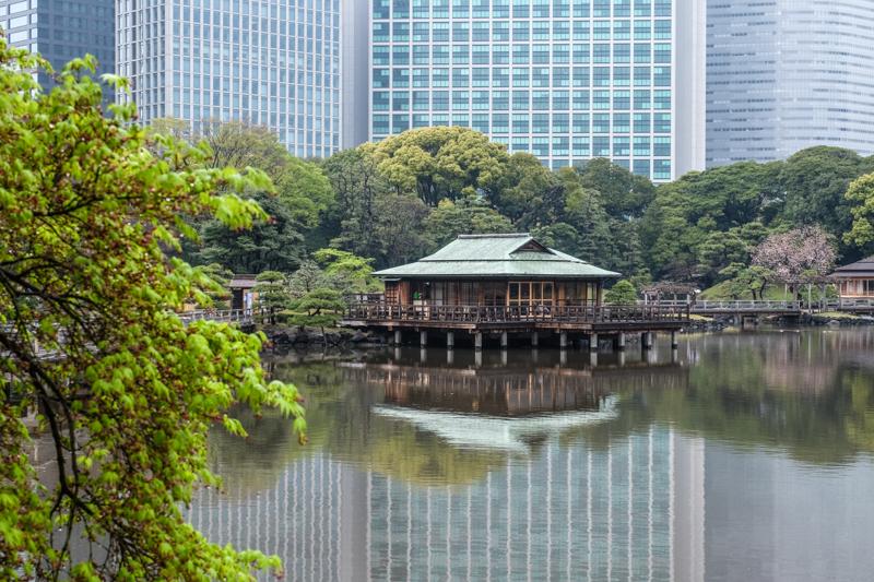 Si Vous Rvez De Dcouvrir Le Japon Ce Fabuleux Pays Aimant Profondment Ses Traditions Et Valeurs Mais Qui Est Tout Mme Tourn Vers La